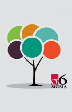 Measure Phase in Lean Six Sigma - Online Course