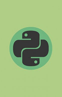 Basic of Python Programming - Online Course