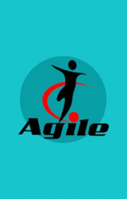 Agile Value Based Prioritization - Online Course