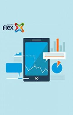 FLEX- MXML & Actionscript - Online Course
