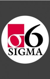 Overview of Lean Six Sigma - Online Course