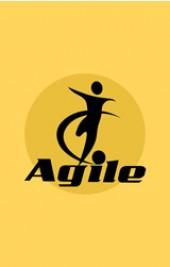Agile Leadership Management - Online Course