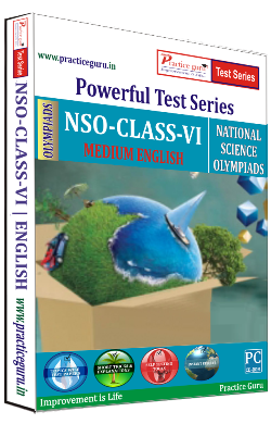 Practice Guru NSO Class 6 , 25 Topic Wise Tests Mock tests English Online Test
